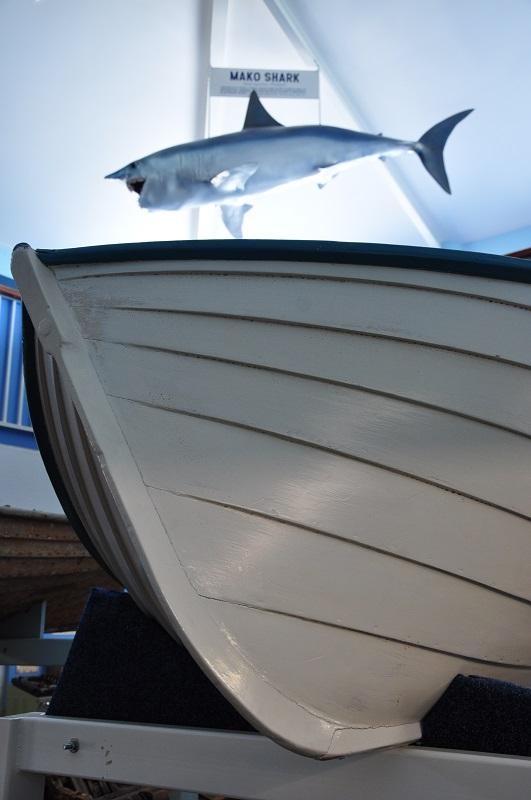 Une baleinière à Eden Killer Whale Museum