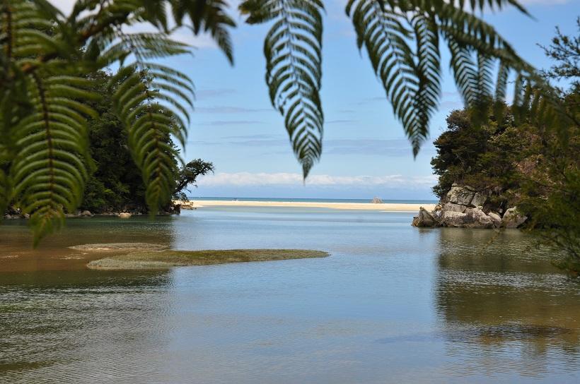Arrivée à Bark Bay, Abel Tasman