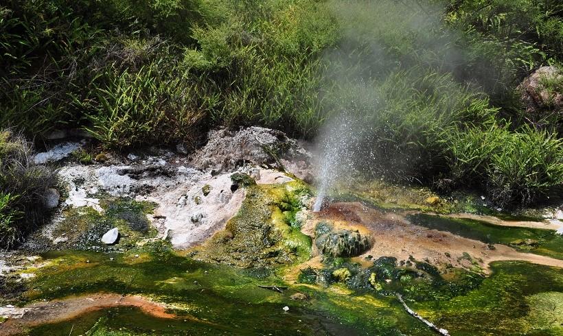 Petit geyser dans la Waimangu Volcanic Valley